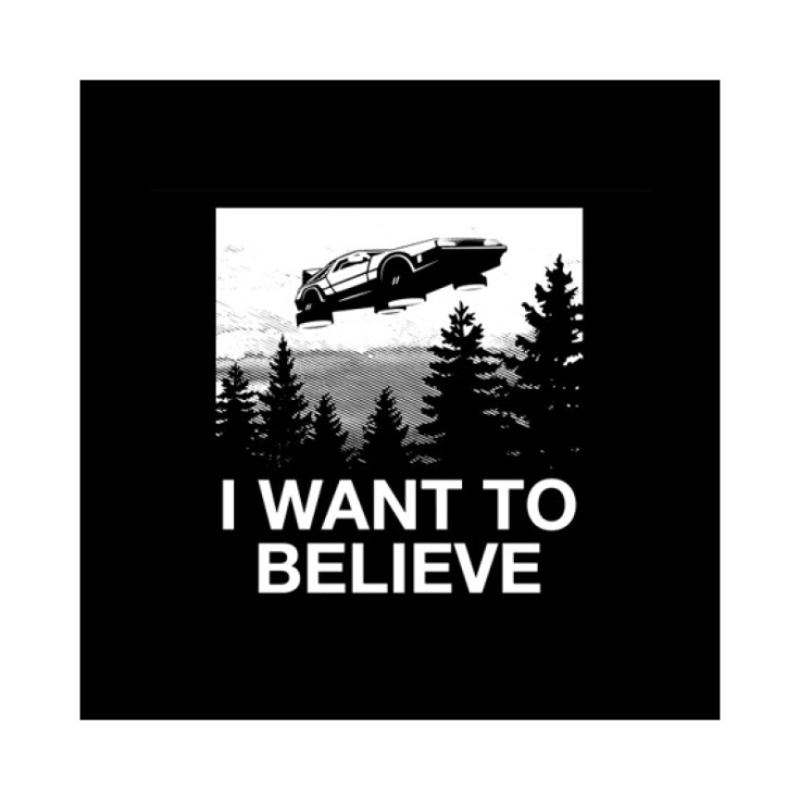 tee-shirt-i-want-to-believe-delorean